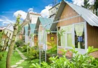 phat-sot-voi-chuoi-homestay-mini-nhin-cuc-tay-o-da-lat-3df1395c636100626259672336